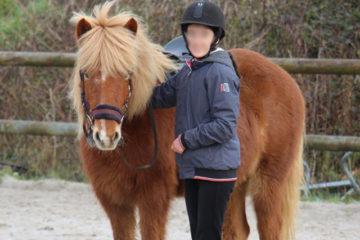 princesse cheval islandais